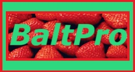 BALTPRO EXPORT FROM LITHUANIA