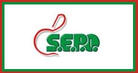 S.E.P.O. SpA EXPORT FROM ITALY